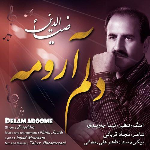 دانلود موزیک جدید ضیاءالدین دلم آرومه